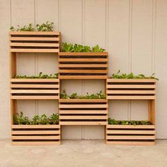 huertos urbanos madera axis carpinteria y diseño decoracion interiorismo badajoz extremadura carpinteros (3)
